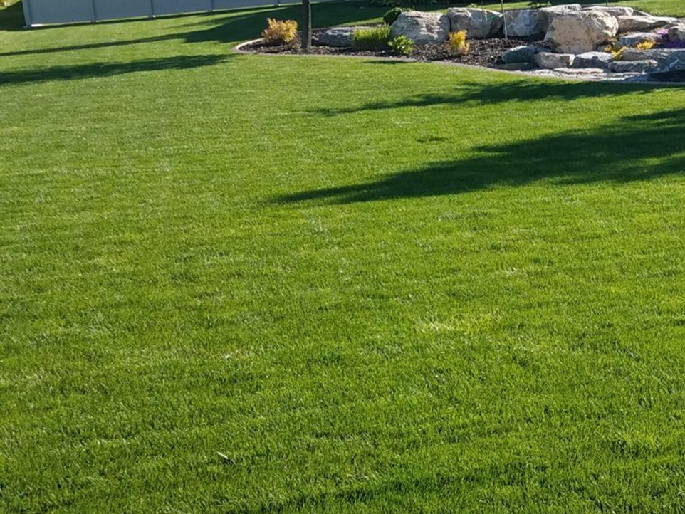 Liquid Lawn Aeration Services